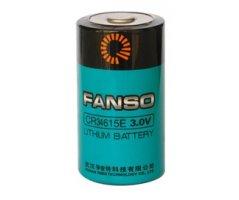 Fanso 3V lithium D batteri 12000mAh Li-MnO2