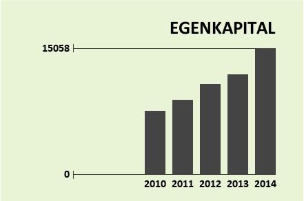 ACTEC Egenkapital